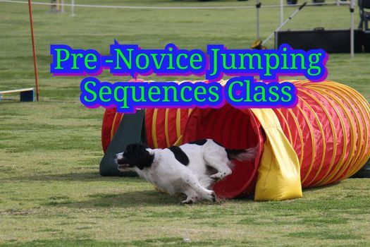 Pre-Novice Jumping Sequences | Event in Forrestdale | AllEvents.in