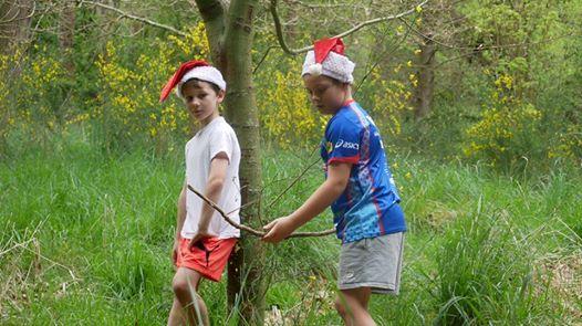Wild Christmas (Mashlands)