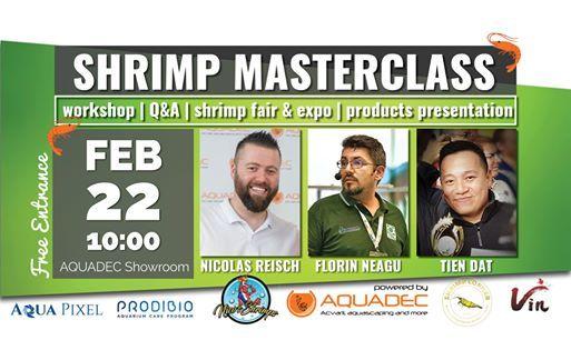 Shrimp Masterclass