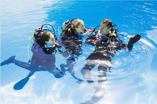 OPEN WATER DIVER Curso events in the City. Top Upcoming Events for ...