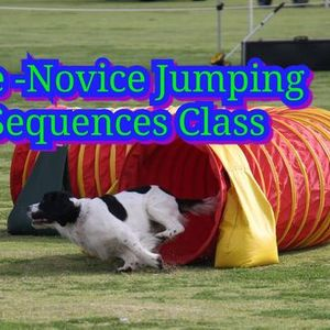 Pre-Novice Jumping Sequences