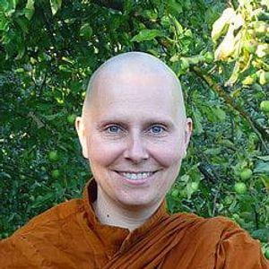 Einfhrung in den Buddhismus und die Vipassana-Meditation- LIVE ONLINE