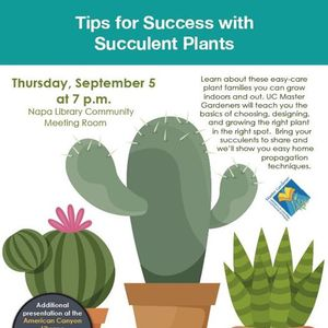 Tips for Success with Succulent Plants - AC Public Library