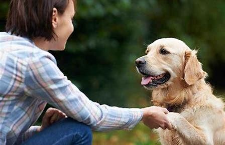 Pets for Mental Health  course