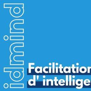 ExecutiveProgram - Facilitation dIntelligence Collective