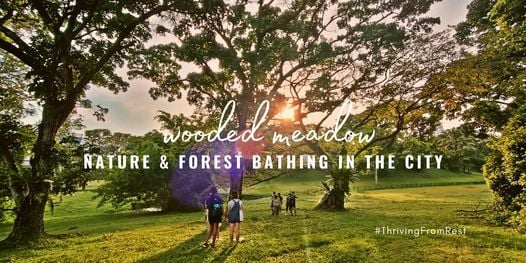 Nature and Forest Bathing in the City【Wooded Meadow】 | Event in Jurong | AllEvents.in