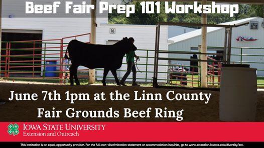 Beef Fair Prep 101 Workshop
