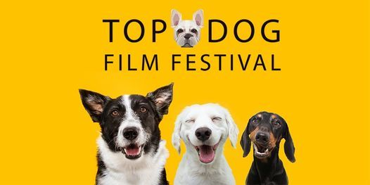 Top Dog Film Festival 2021 - 2pm 10 Oct Randwick Ritz, 10 October   Event in Rose Bay   AllEvents.in