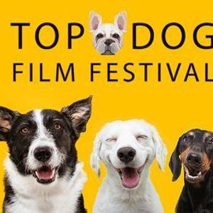 Top Dog Film Festival 2021 - 2pm 10 Oct Randwick Ritz