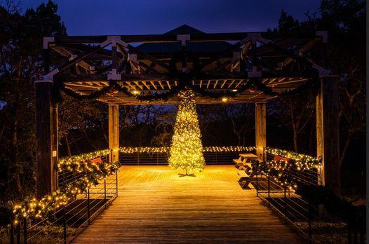 Christmas Events Texas Austin 2020 Christmas Tree Lighting 2020, Concordia University Texas, Austin