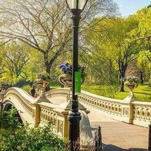 Central Park Date Walking