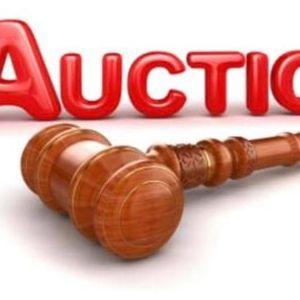 Online Yard SaleStore Auction