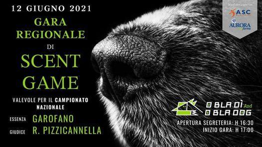GARA REGIONALE DI SCENT GAME | Event in Rome | AllEvents.in