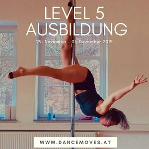 PoleConcepts Level 5 Trainerausbildung