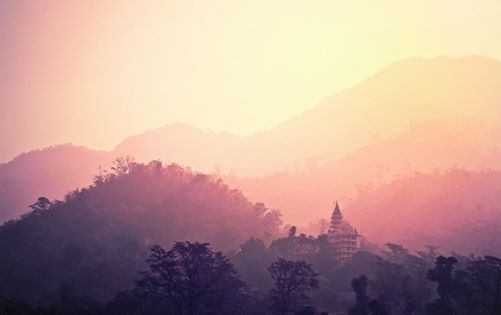 XXL les  Klassieke Hatha Yoga - Sivananda Methode met Asia