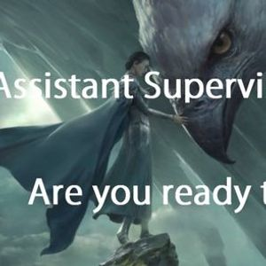 Assistant Supervisor Day