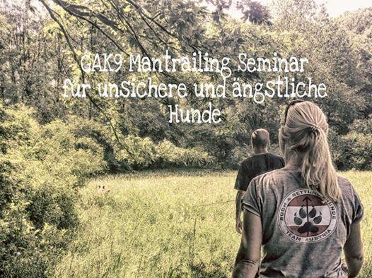 GAK9 Mantrailing Seminar in Wien fr unsichere Hunde