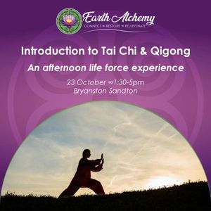 Introduction to Tai Chi and Qigong an afternoon life force experience