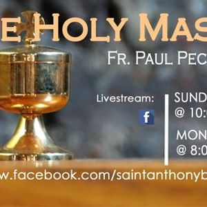 Livestream Sunday Mass with Fr. Paul Pecchie