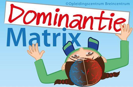 DominantieMatrix Opleiding