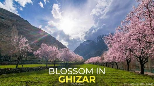 Blossom trip to Ghizer, Ishkoman & Phandar, 27 March | Event in Islamabad | AllEvents.in