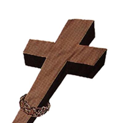 Hermandad del Vía Crucis del Santo  Cristo de la Salud