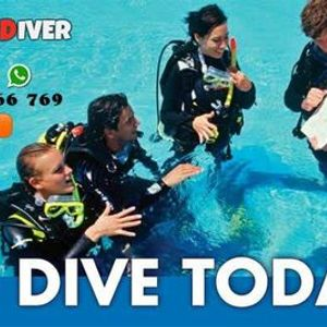 PADI Open Water Diver Course for Beginners