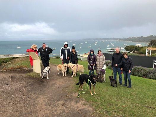 Around The Bay Doggy Trek