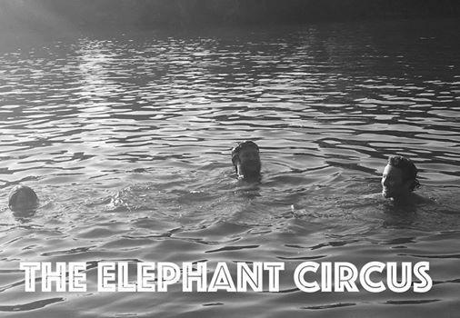 The Elephant Circus (DNZL)