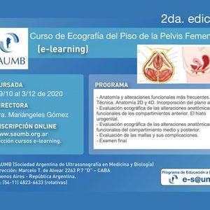 Curso de Ecografa del Piso de la Pelvis Femenina 2020 2da edicin