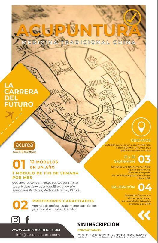 Diplomado De Acupuntura At Escuela Acurea En Veracruz Veracruz