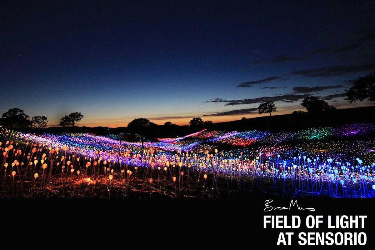 "Bruce Munro: Field of Light at Sensorio, Thursday ""FAMILY NIGHT"" Dec 24th, 24 December | AllEvents.in"