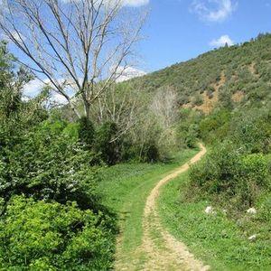 Caminhada de Grande Rota - 40 kms