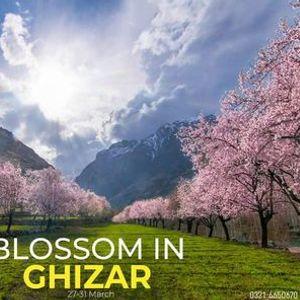 Blossom trip to Ghizer Ishkoman & Phandar