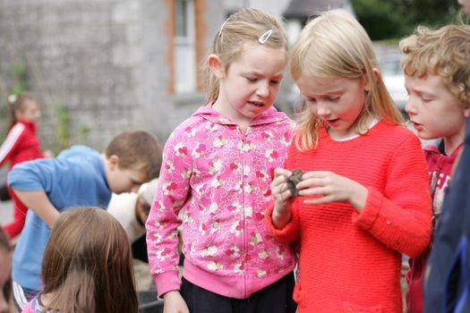 Palmerstown Community and Youth Centre - Junior Archaeologists' Club | Event in Dublin | AllEvents.in