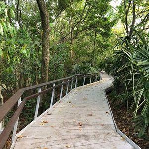 Coastal Walk & Yoga