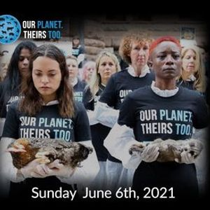 National Animal Rights Day 2021 - Napoli