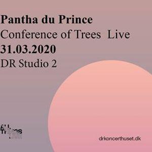 Pantha Du Prince  DR Koncerthuset - Studie 2  31. marts