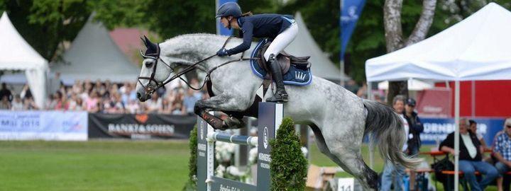 2021 Pferd International München, 13 May | Event in Munich | AllEvents.in