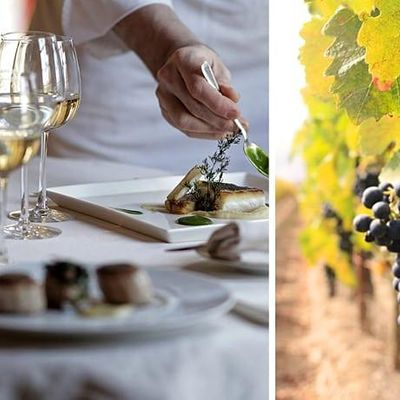 """Wine Class &quotWines of Loire Valley and Bordeaux Wine Regions"""""""
