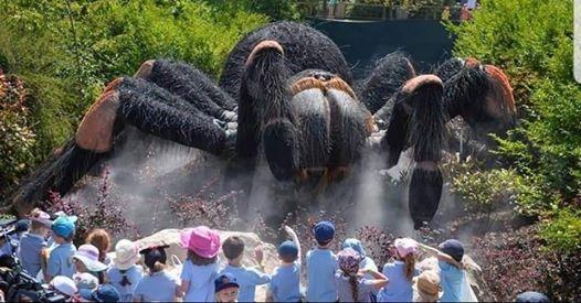 Giant Creature World Walter Sisulu National Botanical Garden
