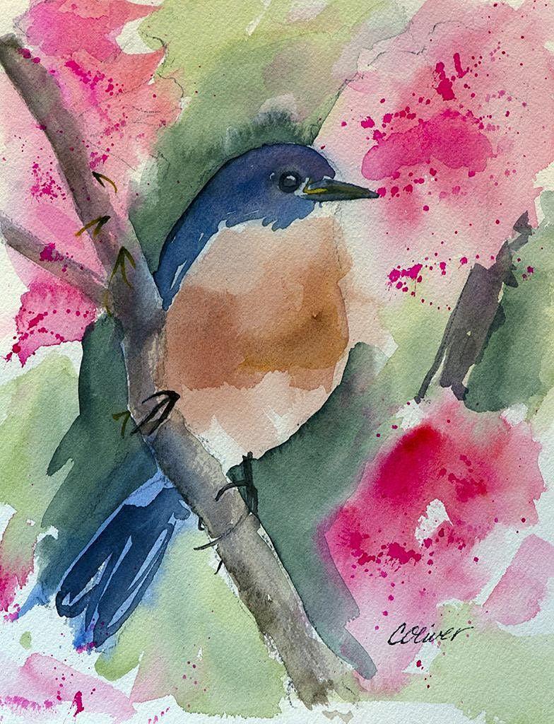SS-12 – Watercolor Wildlife | Online Event | AllEvents.in