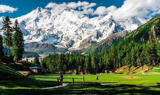 5 Days Trip to Fairy Meadows & Beyal Camp   Event in Gujranwala   AllEvents.in