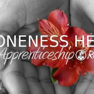 1 Yr Energy Healer Apprenticeship 12 Masters Self-Purification
