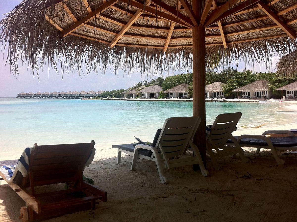 SurfDent MALDIVES Seminars at  Cinnamon Dhonveli Resort (Pasta Point), 4 July   Event in Male   AllEvents.in
