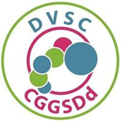 DVSC Denbighshire