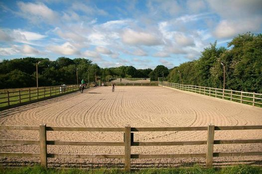 MSRC Dressage Training with Melissa Beer, 16 October | Event in Wisborough Green | AllEvents.in