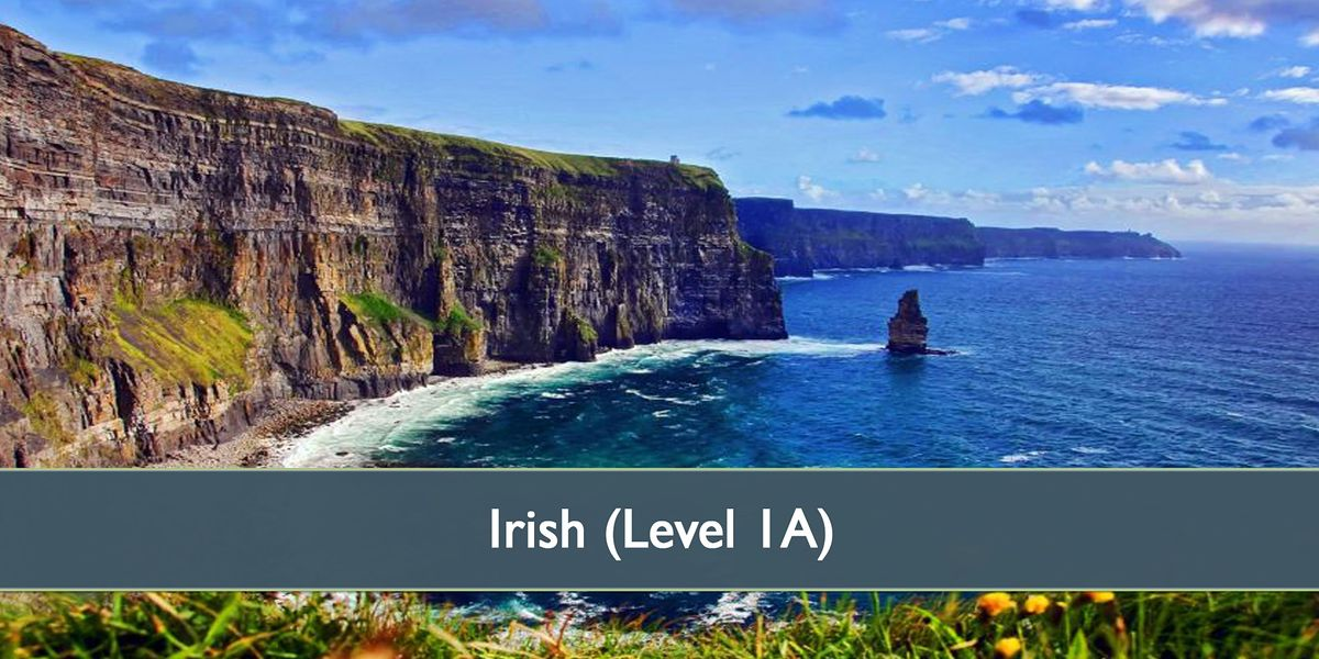 Irish Level 1 - January 2021 | Online Event | AllEvents.in