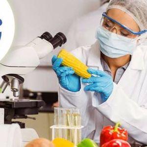 Consulente Igiene degli Alimenti e Gestione Sistema Haccp