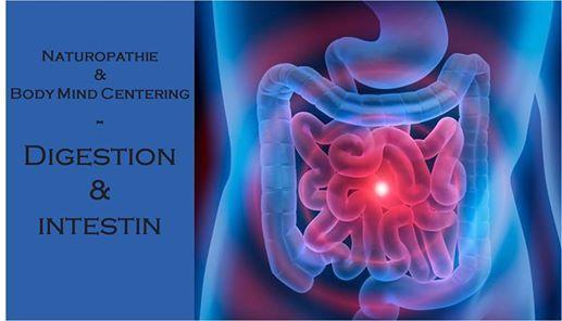 Naturopathie & BMC  Digestion & intestin